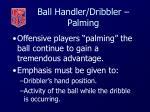 ball handler dribbler palming