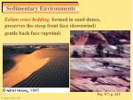 sedimentary environments32