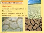 sedimentary structures28