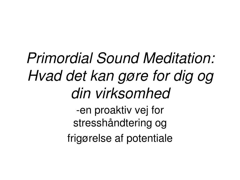 primordial sound meditation hvad det kan g re for dig og din virksomhed l.