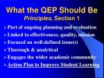 what the qep should be principles section 1