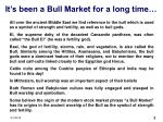 it s been a bull market for a long time