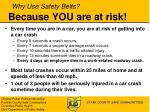 why use safety belts because you are at risk