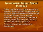 neurological injury spinal ischemia