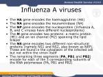 influenza a viruses4