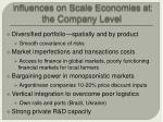 influences on scale economies at the company level