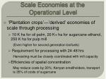 scale economies at the operational level