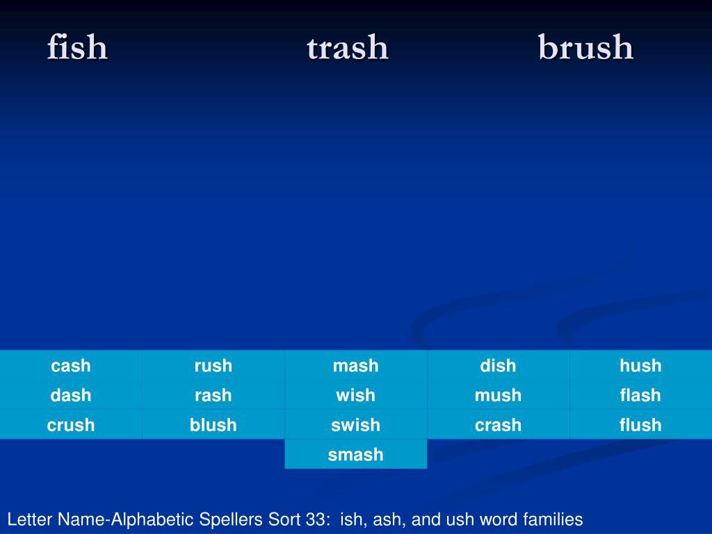 fish trash brush l.