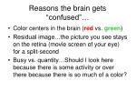 reasons the brain gets confused