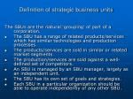 definition of strategic business units