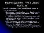 marine systems wind driven fish kills