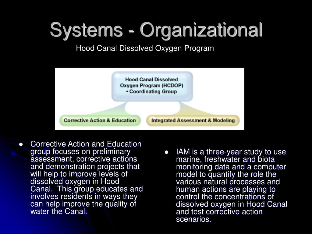 Corrective Action and Education group focuses on preliminary assessment, corrective actions and demonstration projects that will help to improve levels of dissolved oxygen in Hood Canal.  This group educates and involves residents in ways they can help improve the quality of water the Canal.