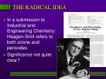 the radical idea
