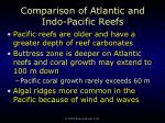 comparison of atlantic and indo pacific reefs