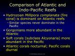 comparison of atlantic and indo pacific reefs47
