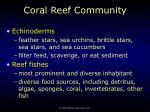 coral reef community62
