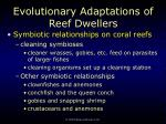 evolutionary adaptations of reef dwellers85