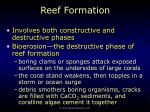 reef formation