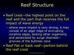 reef structure39
