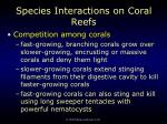 species interactions on coral reefs