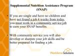 supplemental nutrition assistance program snap