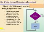 do while control structure looping