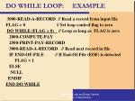 do while loop example