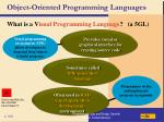 object oriented programming languages109