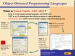 object oriented programming languages110