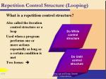 repetition control structure looping