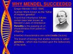 why mendel succeeded