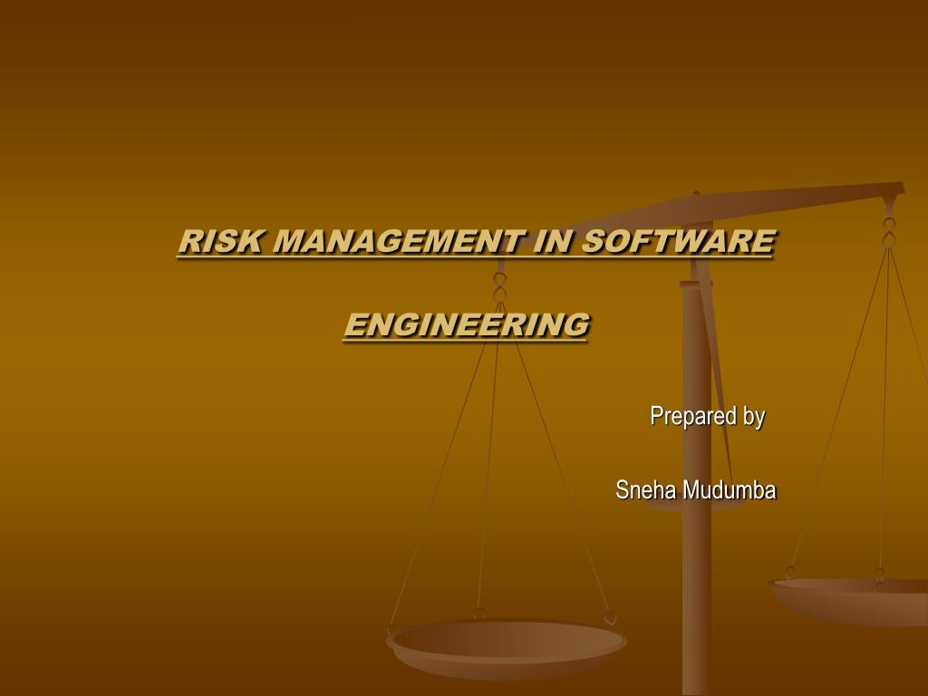 risk management in software engineering l.