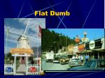flat dumb