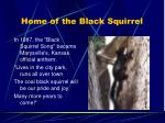 home of the black squirrel