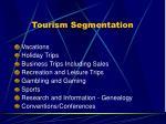 tourism segmentation