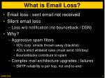 what is email loss
