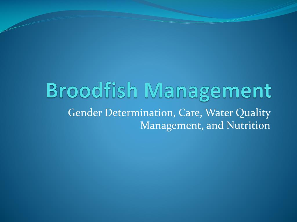 broodfish management l.