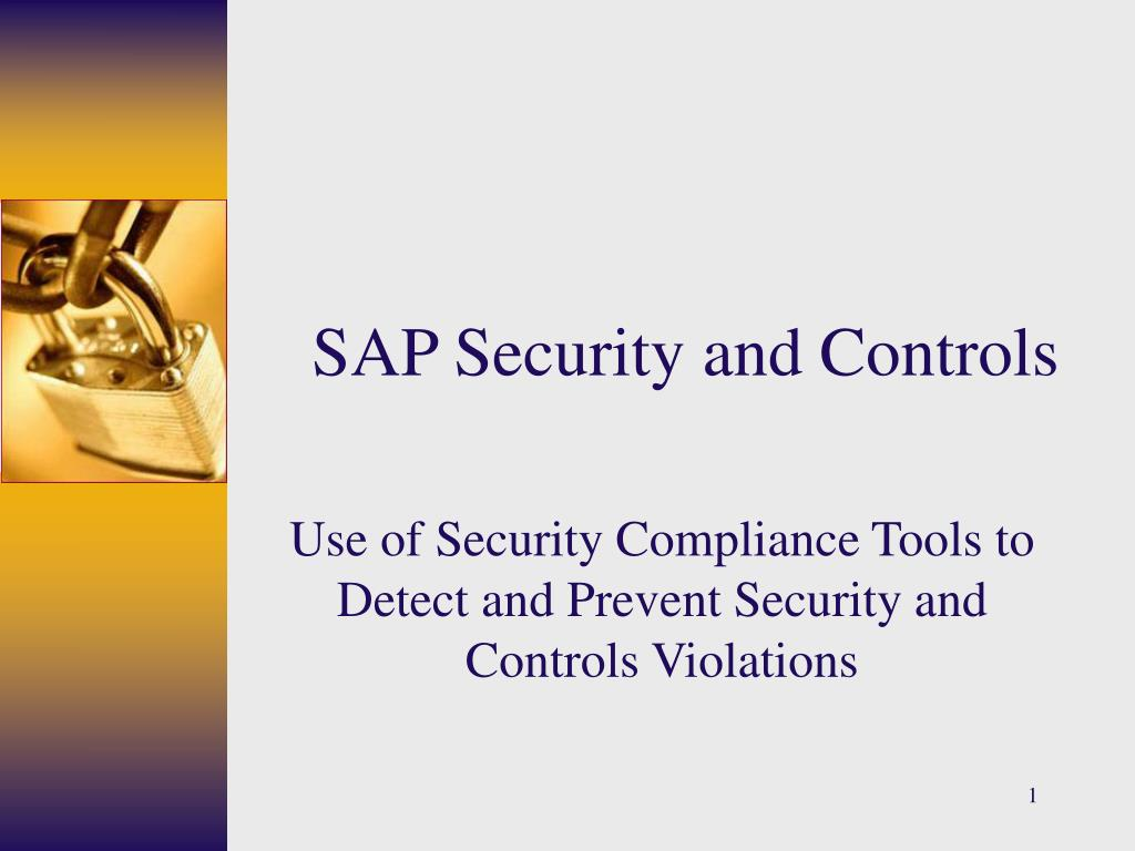 sap security and controls l.