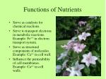 functions of nutrients