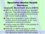 specialist mental health services