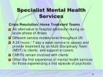 specialist mental health services20