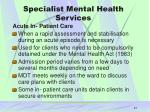 specialist mental health services21