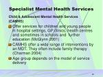 specialist mental health services22