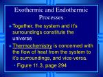 exothermic and endothermic processes8