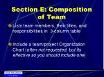 section e composition of team
