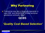 why partnering11