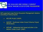 the agulhas and somali current large marine ecosystems programme
