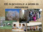 ee in schools a work in progress