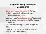 stages of sleep and brain mechanisms25