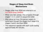 stages of sleep and brain mechanisms27